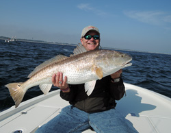 Redfish